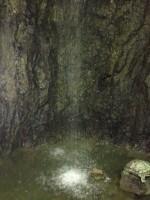 鍾乳洞滝2